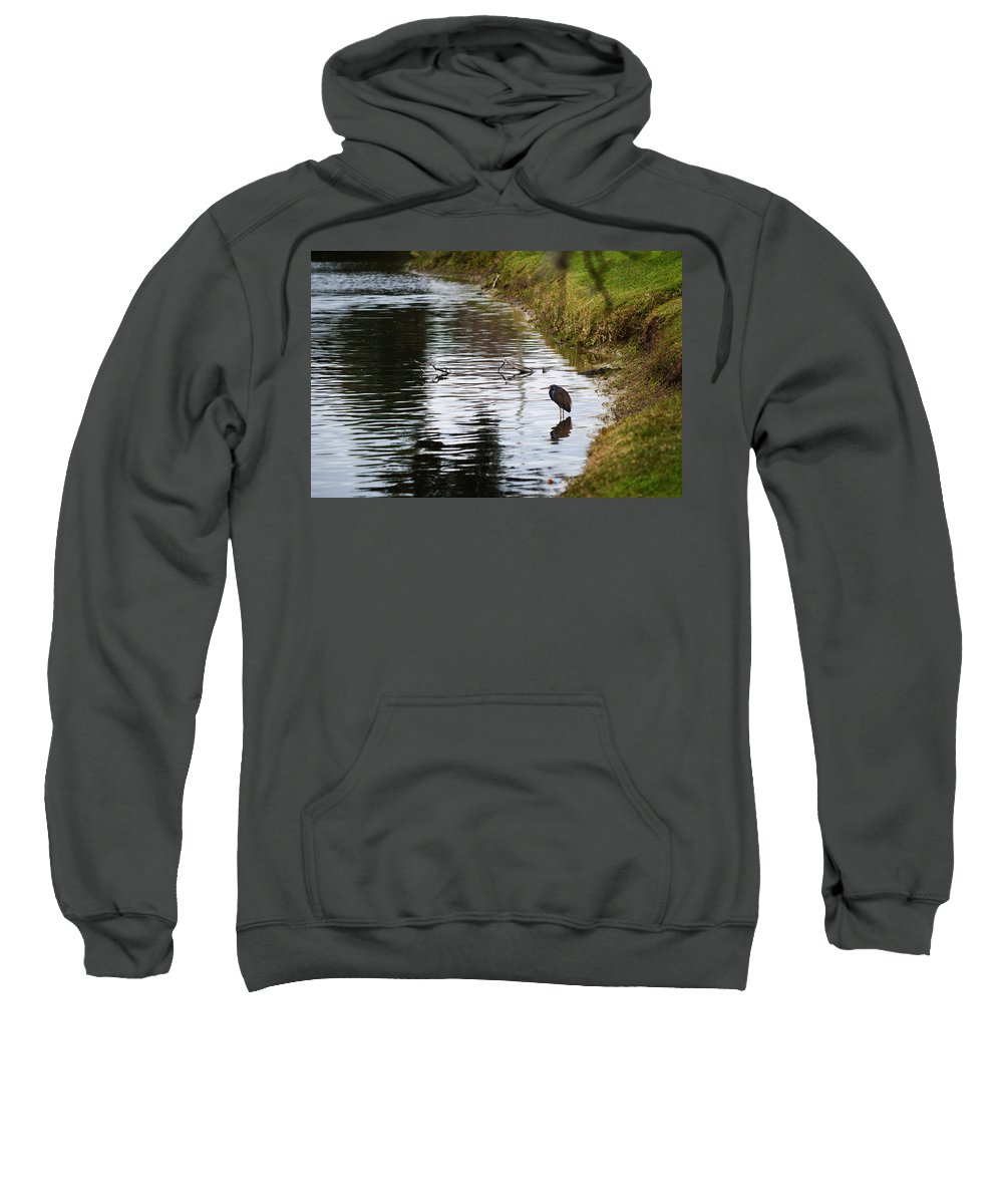 Florida Sweatshirt featuring the photograph Pond Life by Linda Kerkau