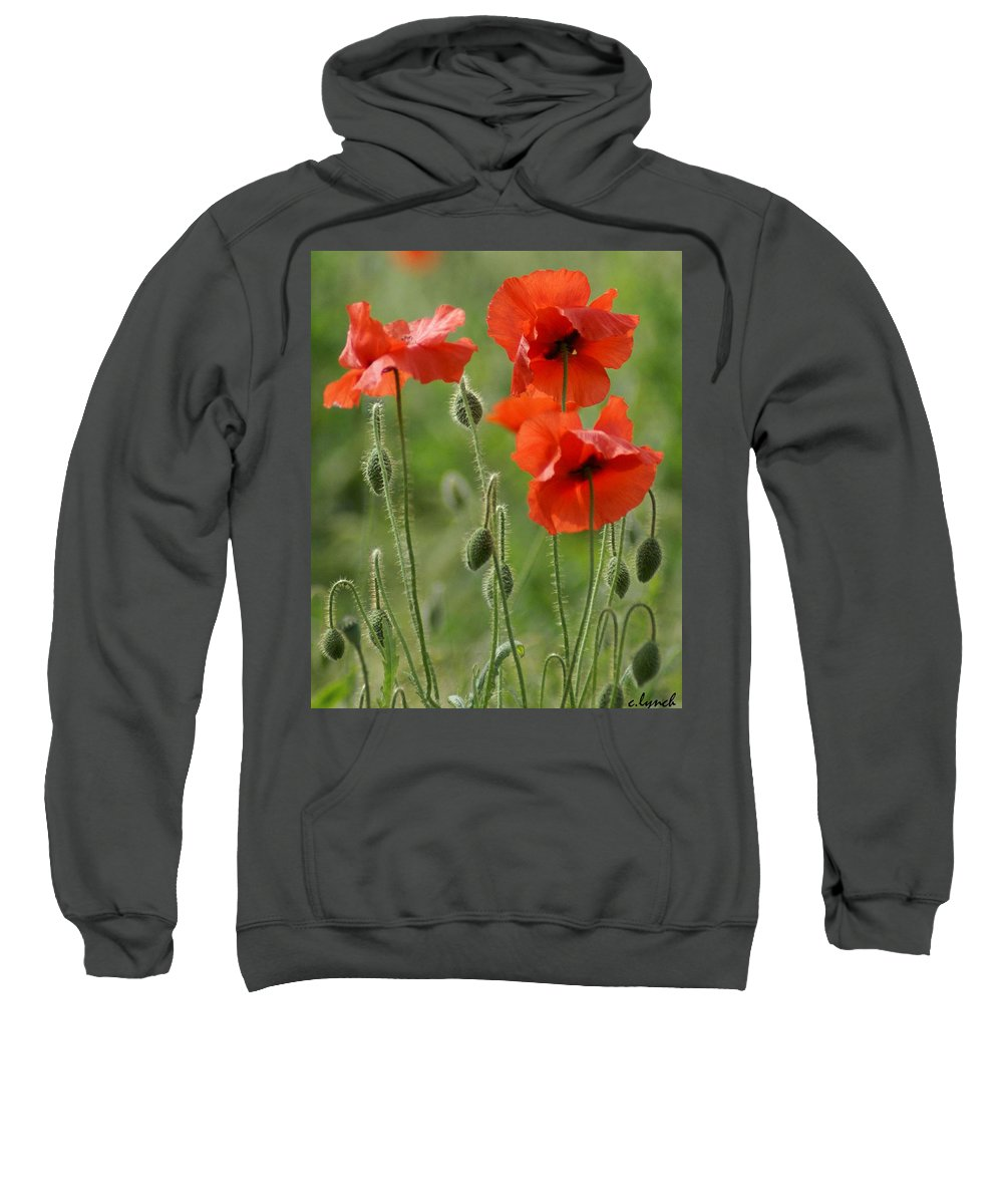 Poppies Sweatshirt featuring the photograph Poppies 2 by Carol Lynch