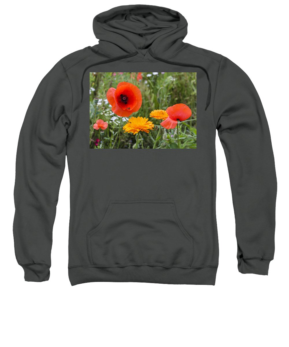 Poppy Sweatshirt featuring the photograph Poppies In The Wild by Chris Smith