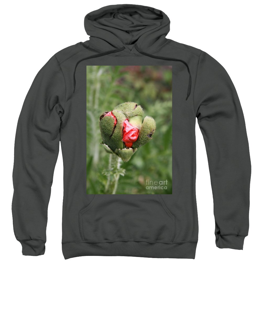 Flowers Sweatshirt featuring the photograph Poppybud by Christiane Schulze Art And Photography