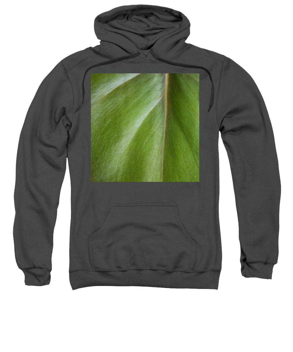Pothos Sweatshirt featuring the photograph Pothos Detail by David Stone