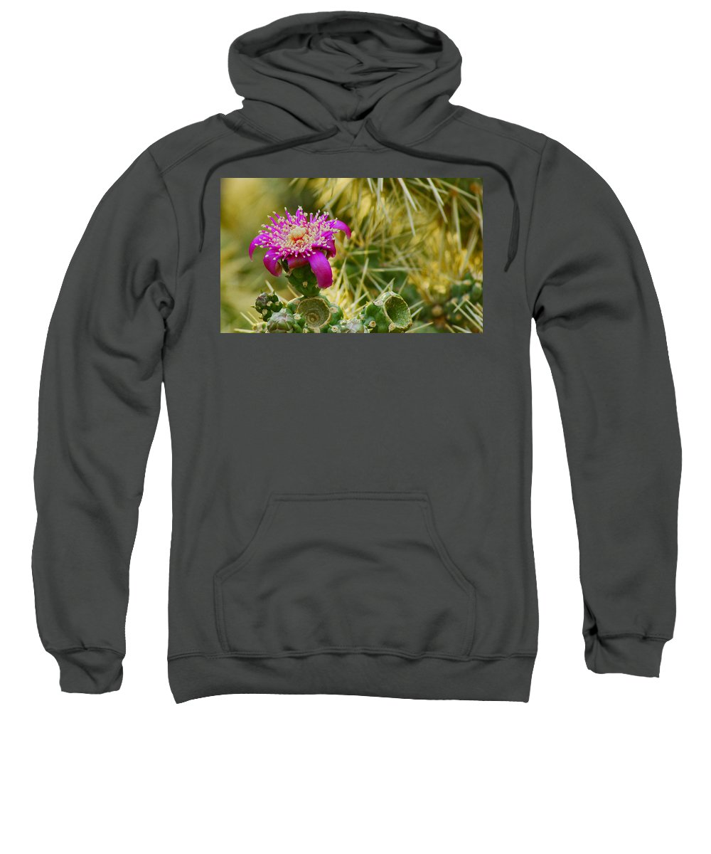 Flower Sweatshirt featuring the photograph Pretty In Pink Too by Patrick Moore