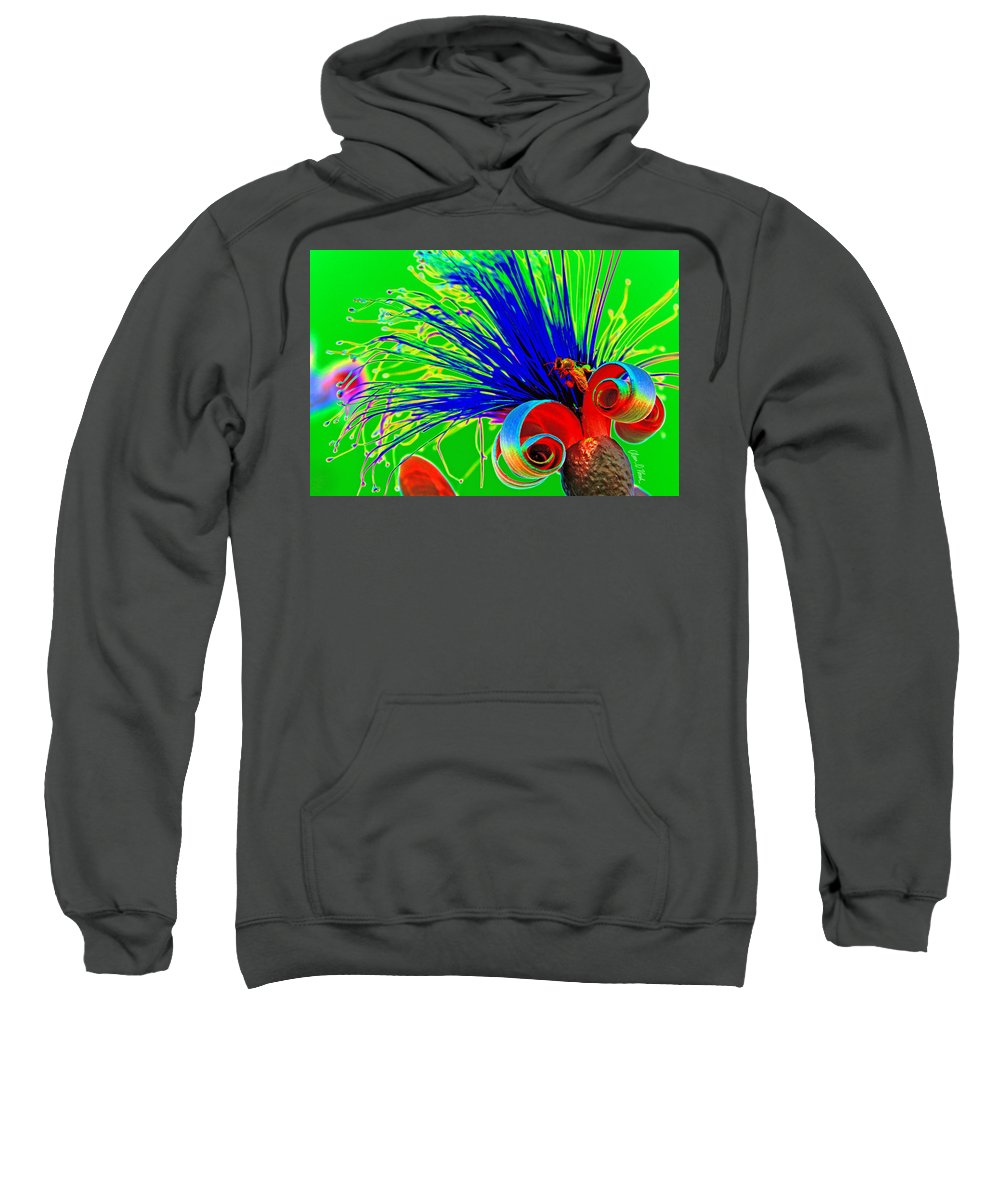 Puffy Bloom Sweatshirt featuring the photograph Puffy Bloom W Bee In Rainbow by Olivia Novak