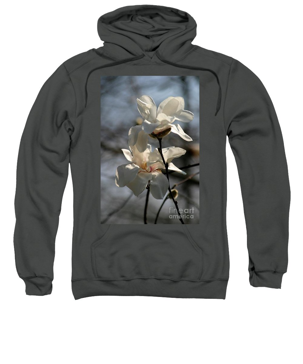 Magnolia Sweatshirt featuring the photograph Purity by Living Color Photography Lorraine Lynch