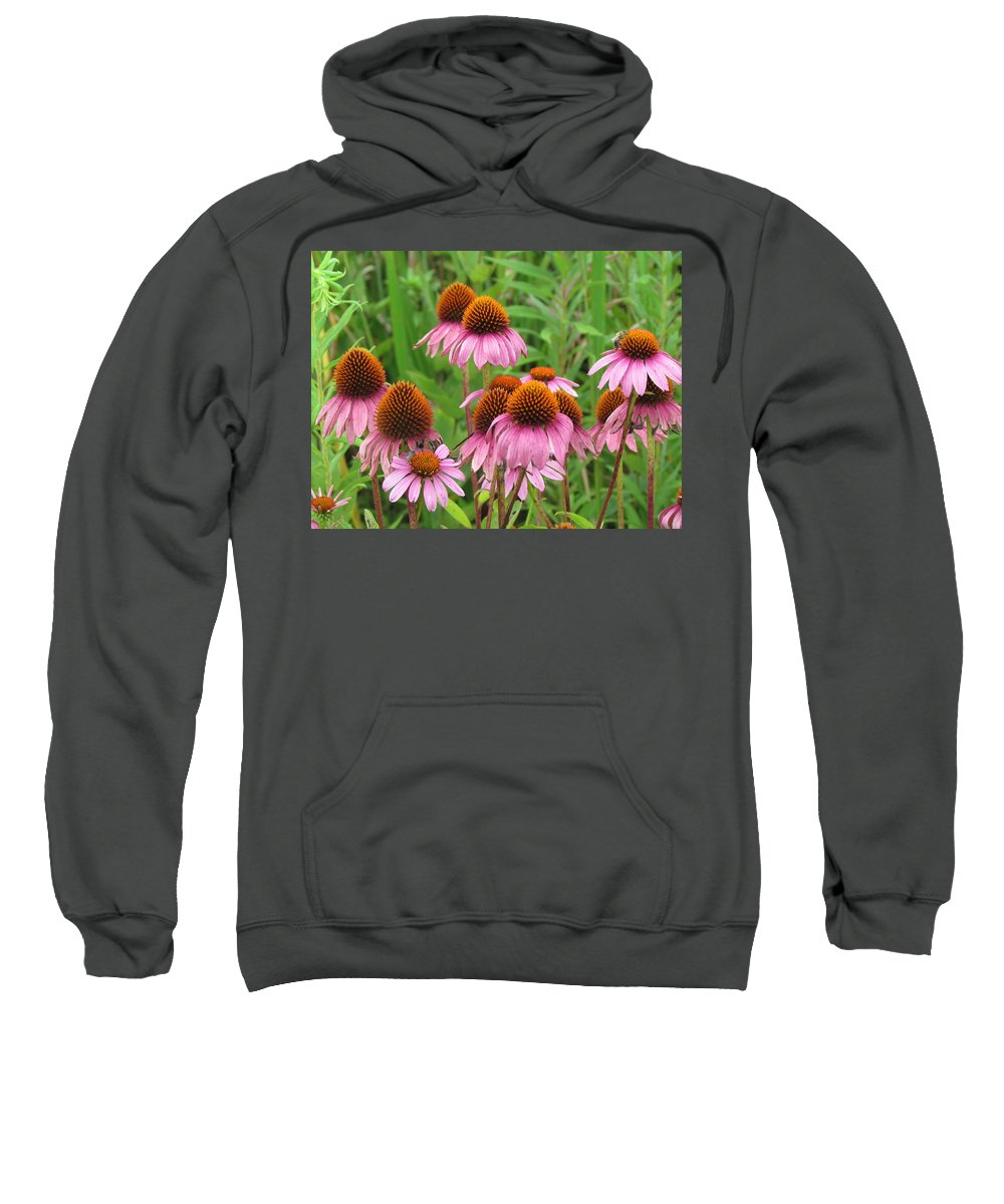 Flower Sweatshirt featuring the photograph Purple Cone Flowers by Eric Noa