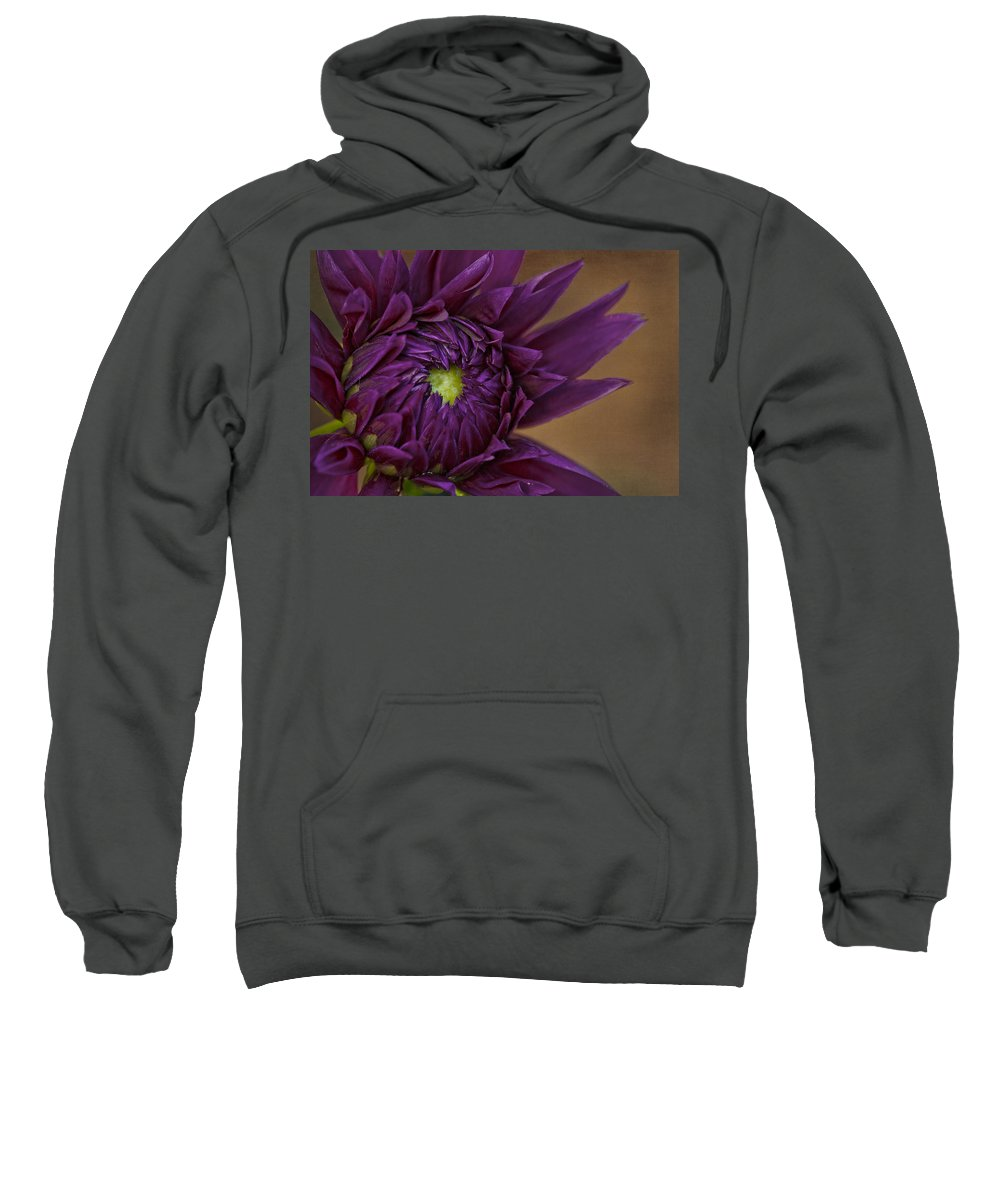 Close Sweatshirt featuring the photograph Purple Dahlia by Linda D Lester