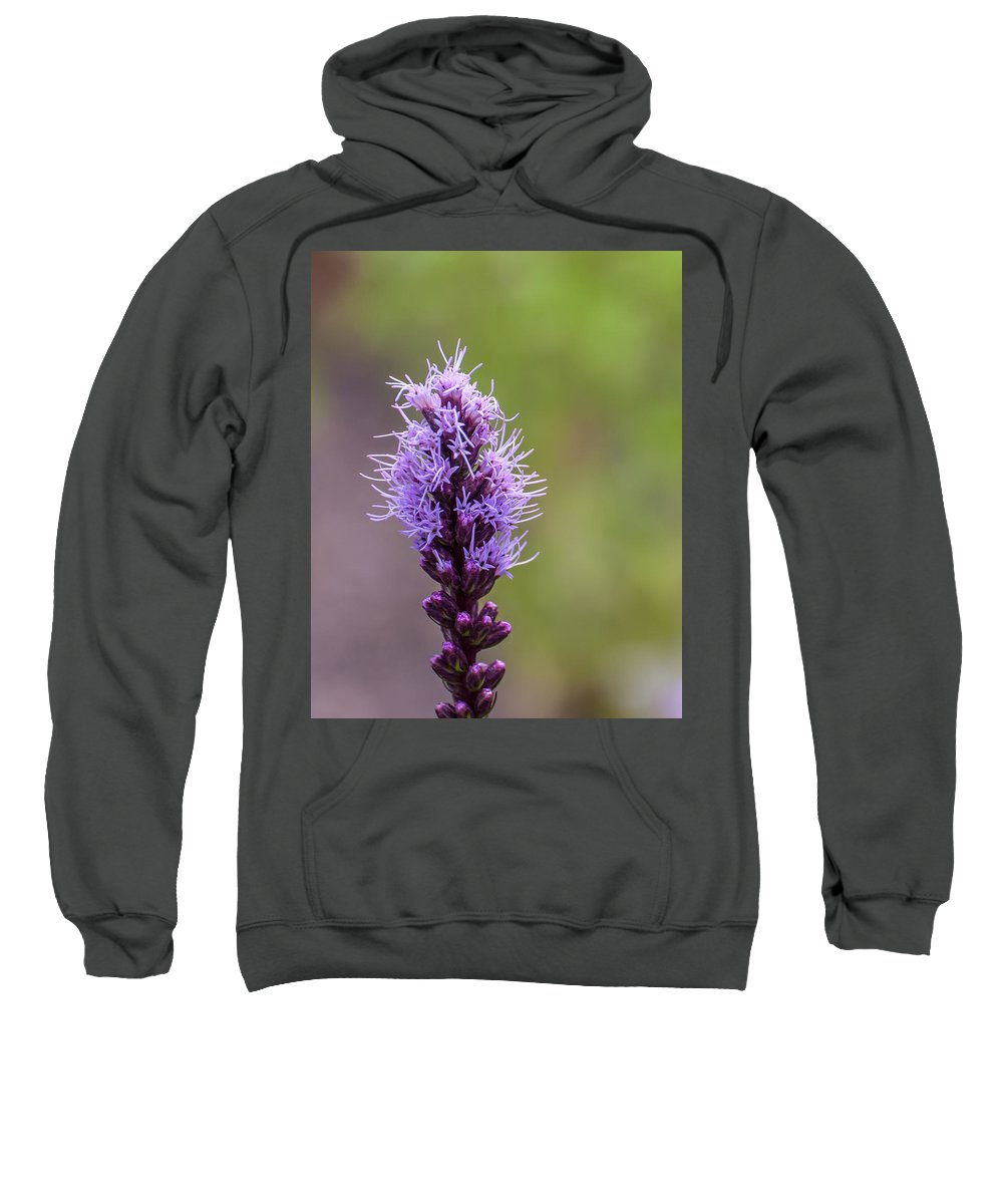 Flower Sweatshirt featuring the photograph Purple Flower by Sharon Meyer