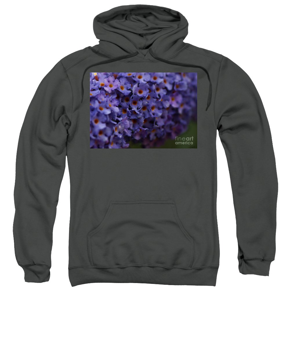 Purple Sweatshirt featuring the photograph Purple Flowers 2 by Carol Lynch