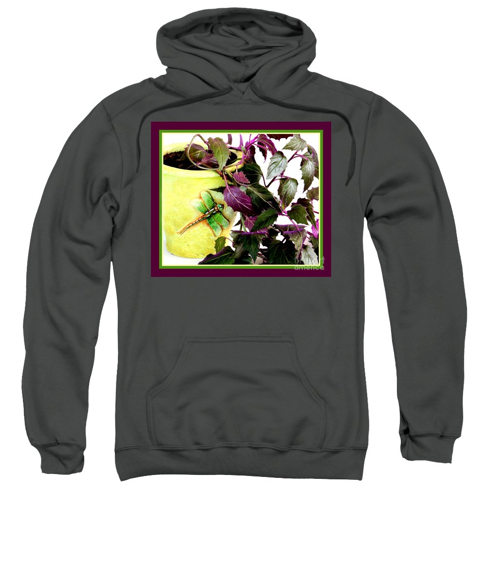 Purple Passion Sweatshirt featuring the photograph Purple Passion In The Sunshine by Barbara Griffin