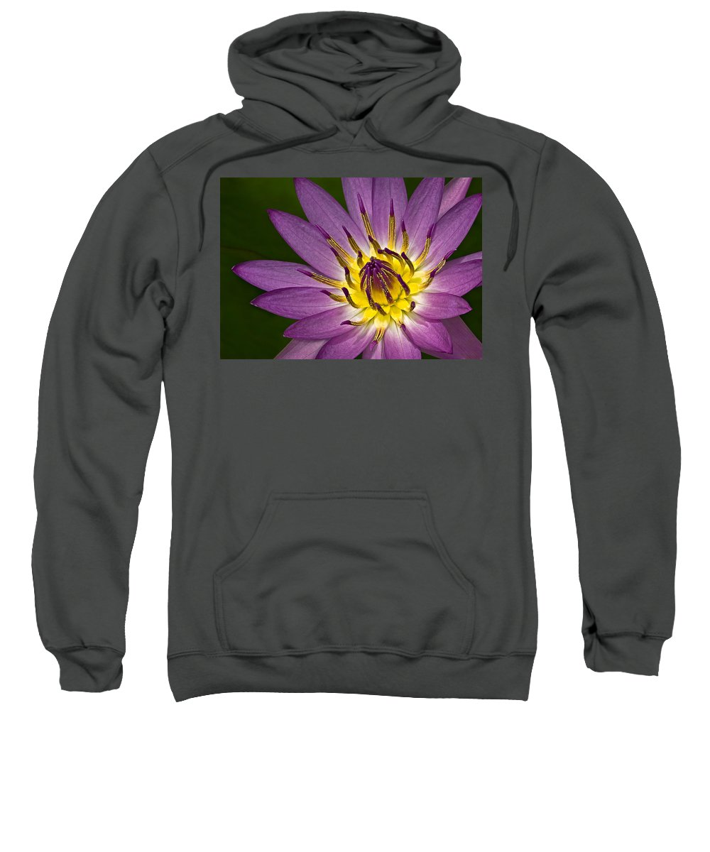 Petals Sweatshirt featuring the photograph Queen Of The Pond by Susan Candelario