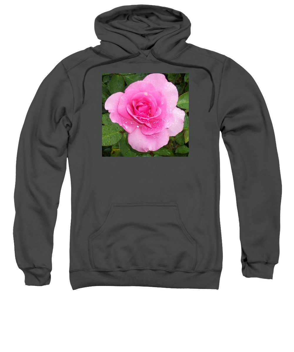 Roses Sweatshirt featuring the photograph Rain Kissed Rose by Catherine Gagne
