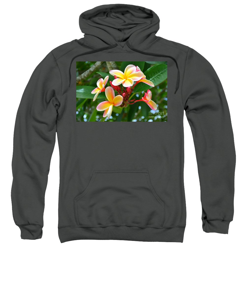 Flowers Sweatshirt featuring the photograph Rainbow Plumeria - No 4 by Mary Deal