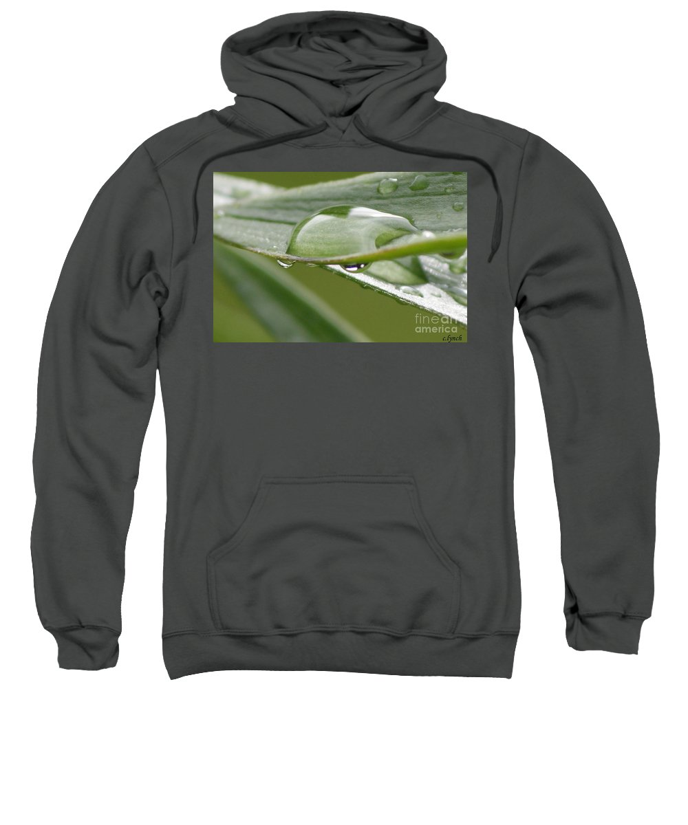 Raindrop Sweatshirt featuring the photograph Raindrops by Carol Lynch