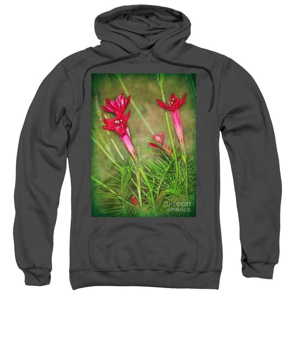 Flowers Sweatshirt featuring the photograph Reaching For The Sky by Judi Bagwell