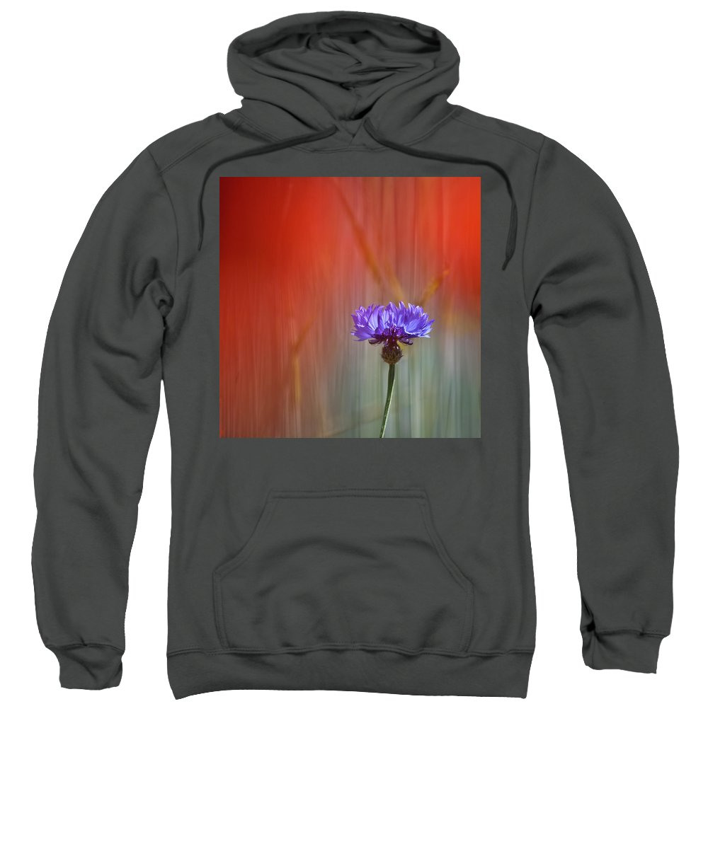 Cornflower Sweatshirt featuring the photograph Red And Blue by Heiko Koehrer-Wagner