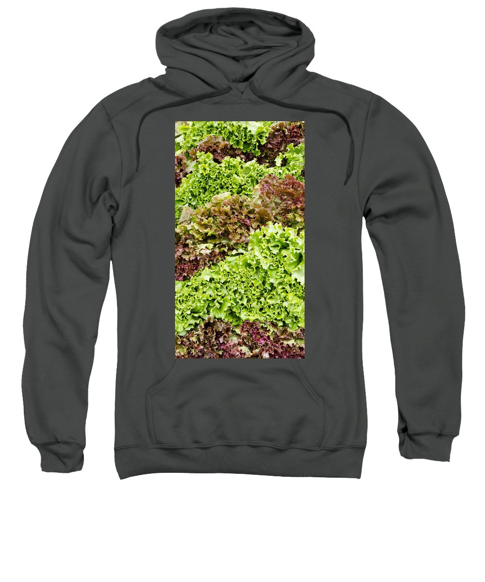 Agriculture Sweatshirt featuring the photograph Red And Green Leaf Lettuce by John Trax