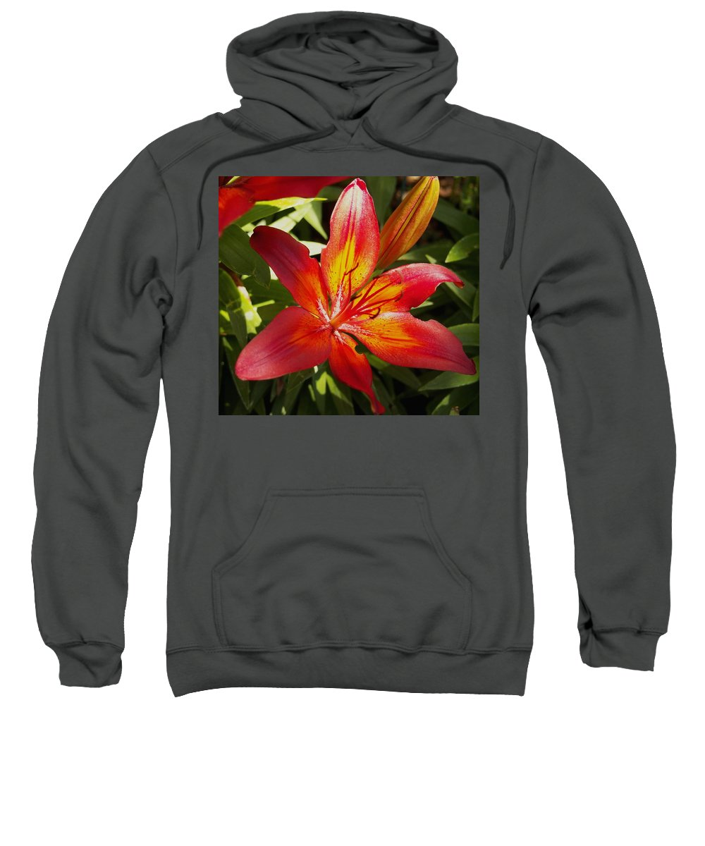 Nature Sweatshirt featuring the photograph Red And Orange Lilly In The Garden by Amy McDaniel