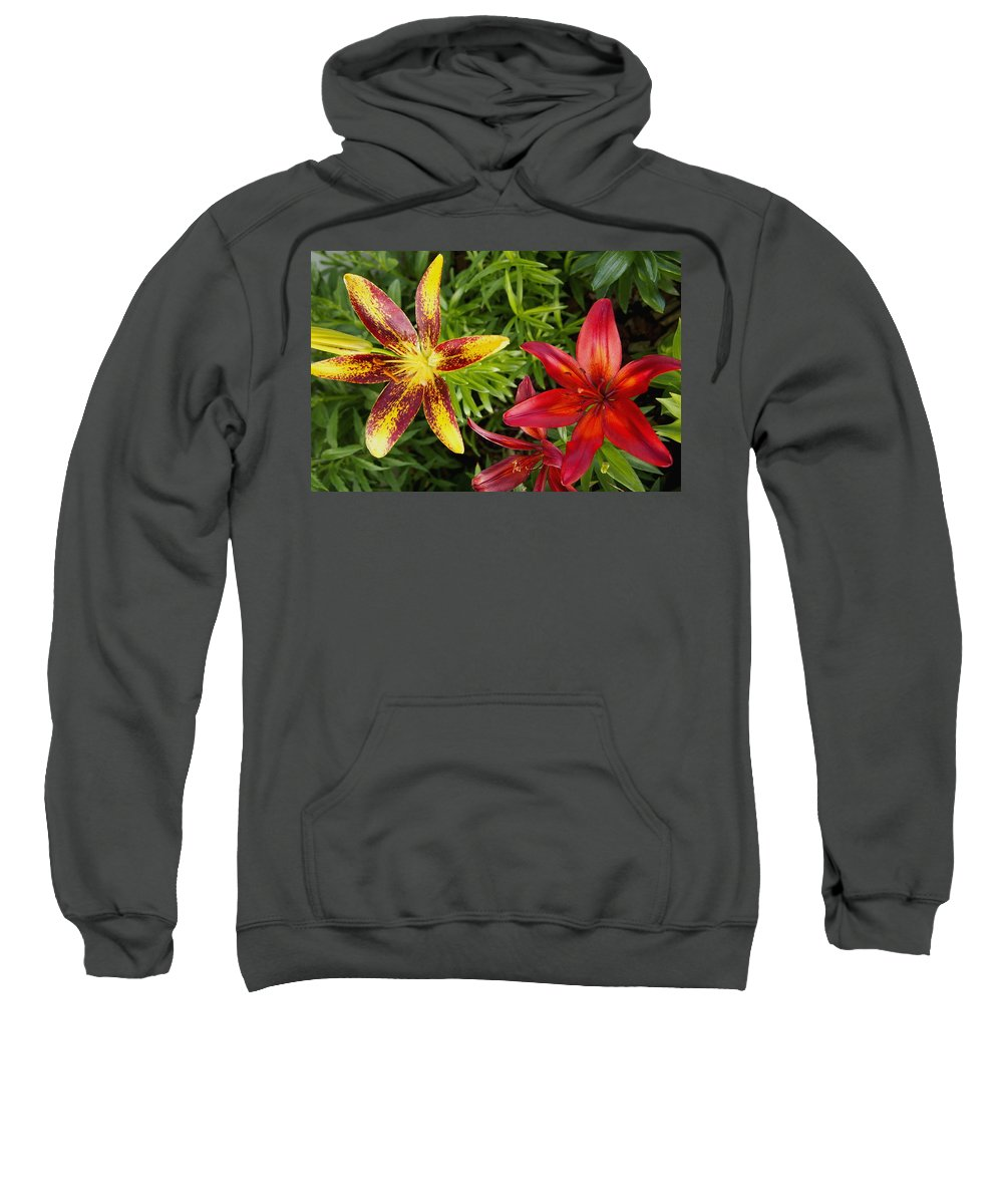 Nature Sweatshirt featuring the photograph Red And Yellow Lilly Flowers In The Garden by Amy McDaniel