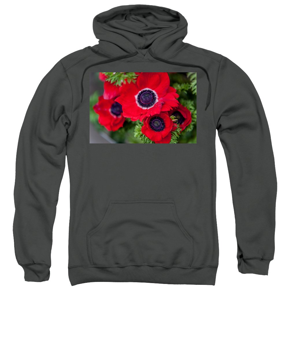 Flower Sweatshirt featuring the photograph Red Anemone. Flowers Of Holland by Jenny Rainbow