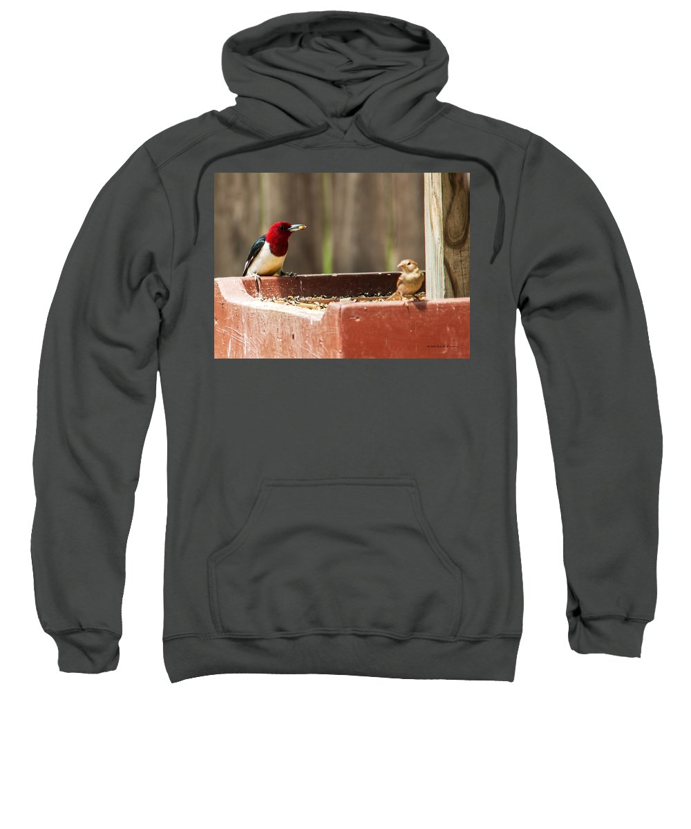 Heron Heaven Sweatshirt featuring the photograph Red-headed Woodpecker Feeding by Edward Peterson