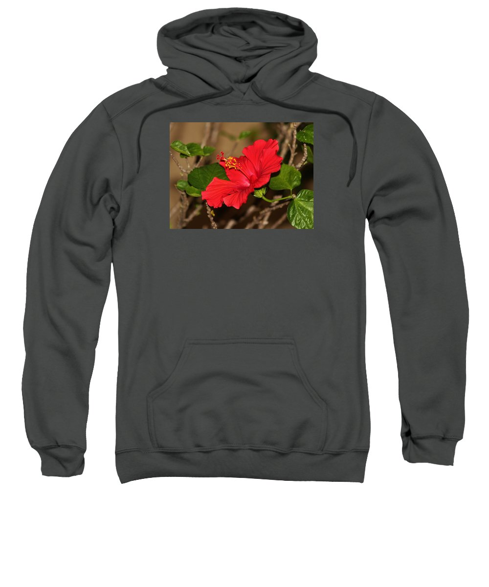 Red Sweatshirt featuring the photograph Red Hibiscus Flower by Cynthia Guinn