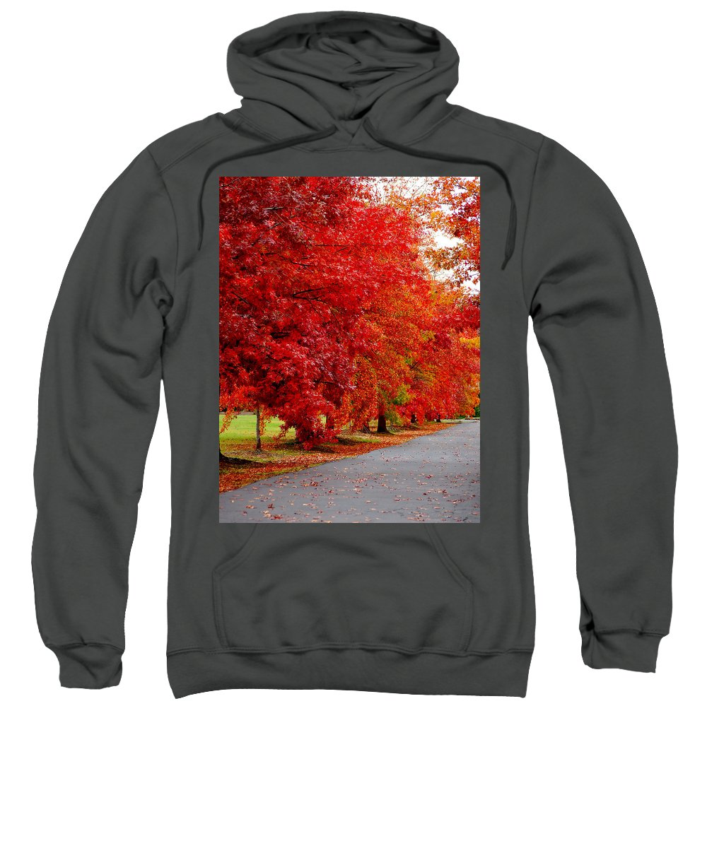 Red Leaf Leaves Fall Colors Road Wet Lined Chico Ca Tree Sweatshirt featuring the photograph Red Leaf Road by Holly Blunkall