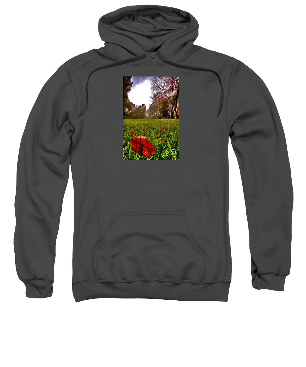 Park Sweatshirt featuring the photograph Red Leaf Under The Hot Autumn Sun by Leyla Ismet