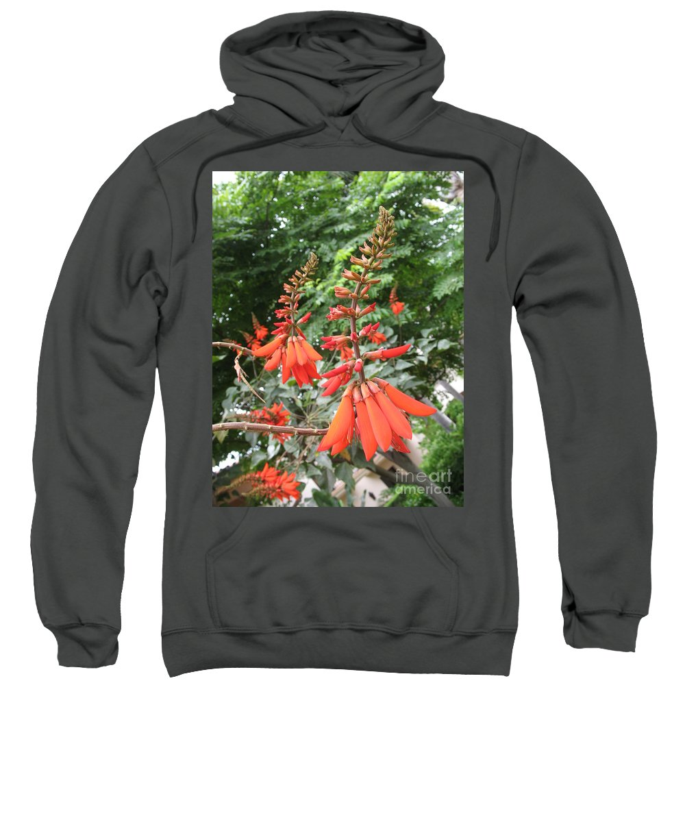Lily Sweatshirt featuring the photograph Red Lily by Christiane Schulze Art And Photography