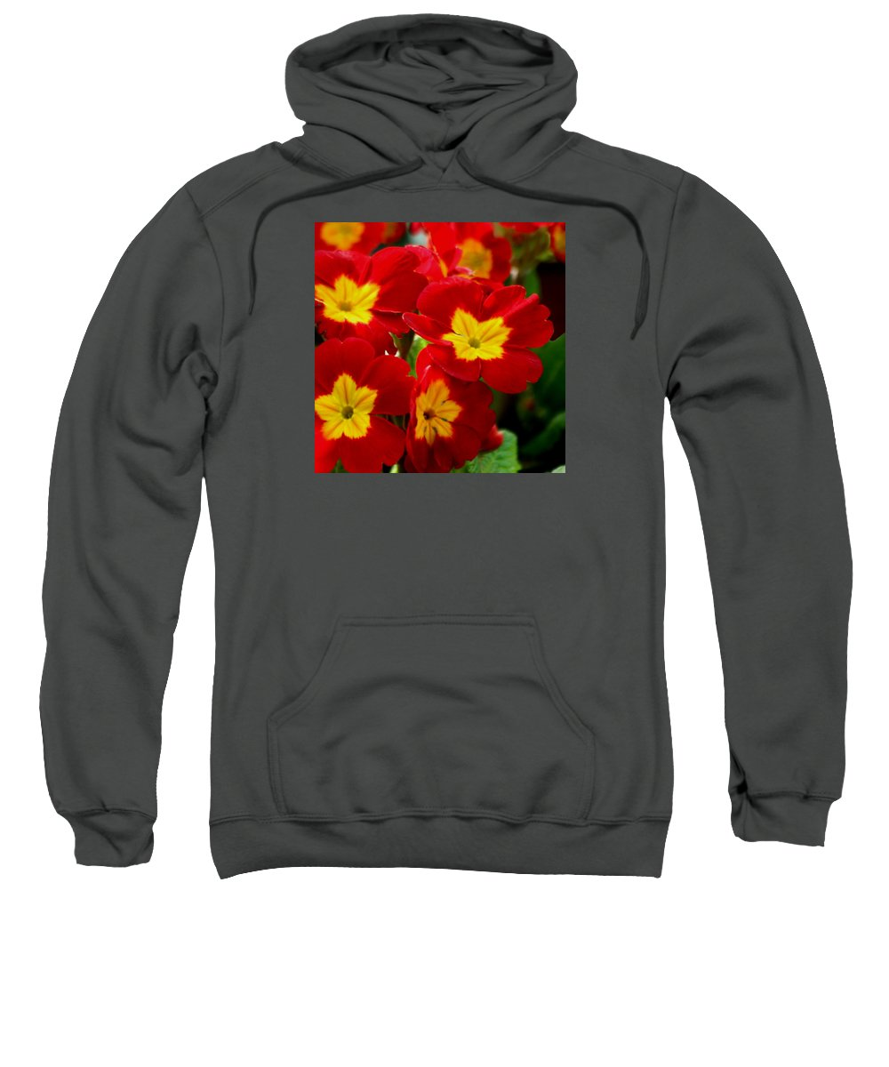 Flower Sweatshirt featuring the photograph Red Primroses by Art Block Collections