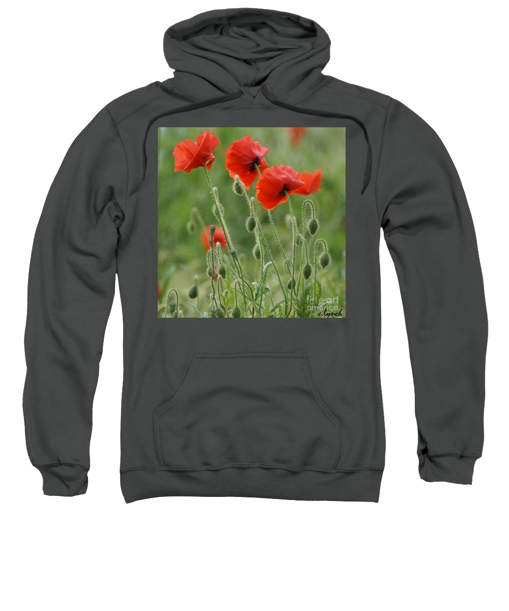 Poppies Sweatshirt featuring the photograph Red Red Poppies 2 by Carol Lynch