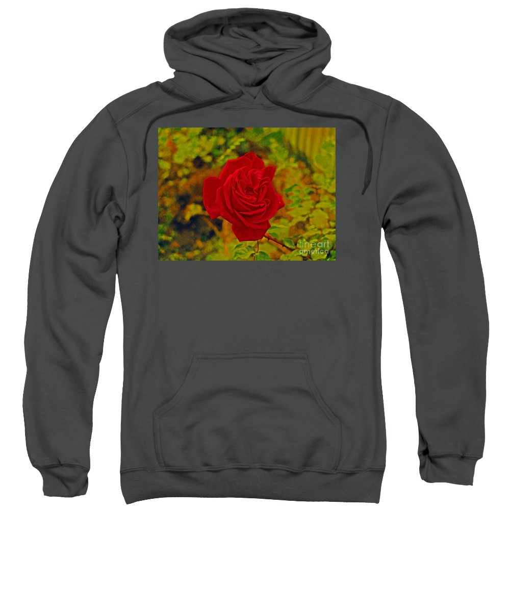 Red Rose Sweatshirt featuring the photograph Red Rose by Simon Kennedy