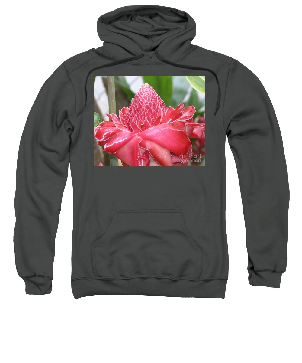 Ginger Sweatshirt featuring the photograph Red Torch Ginger by Mary Deal