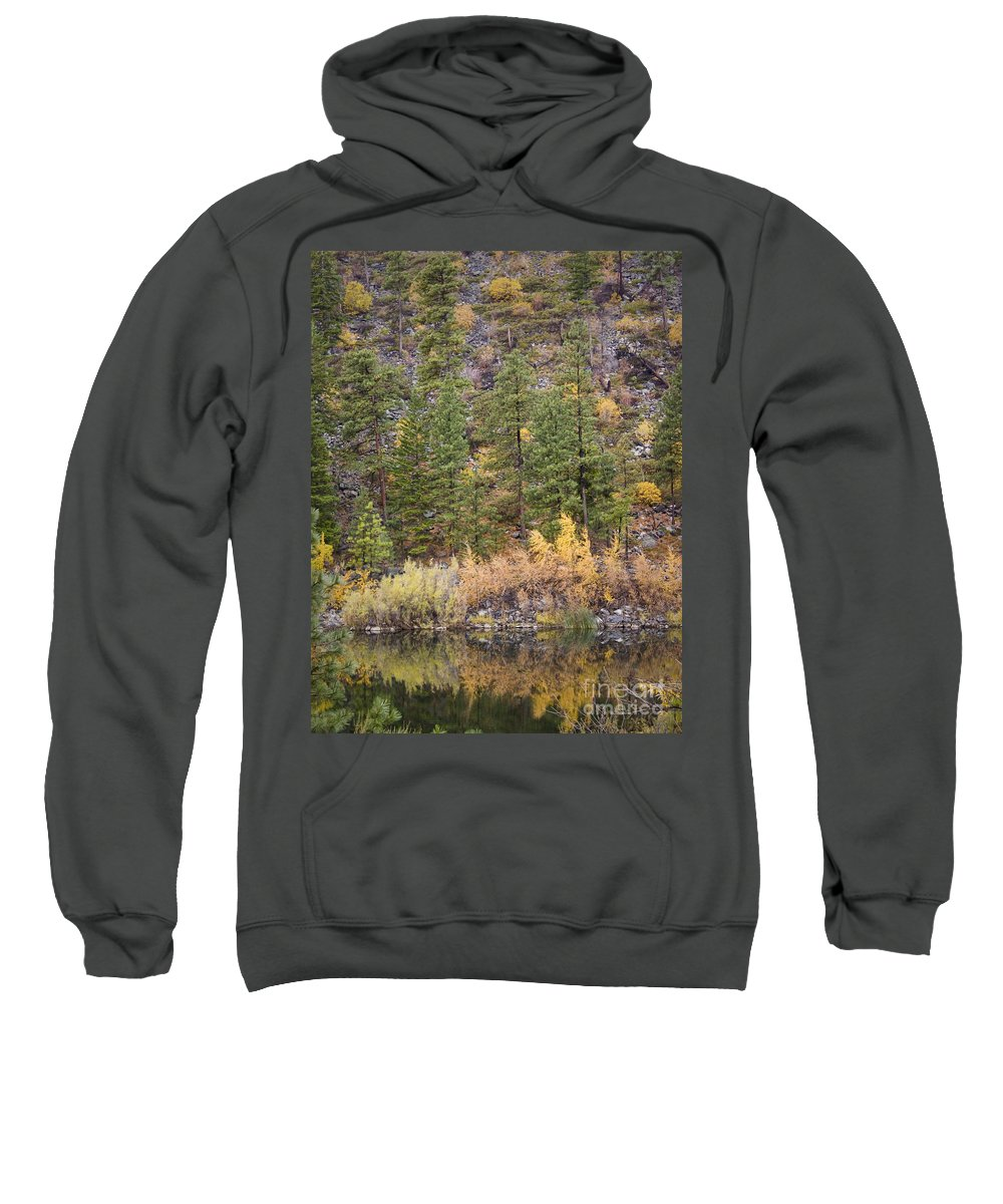 Tree Sweatshirt featuring the photograph Reflect Autumn by Andrea Goodrich