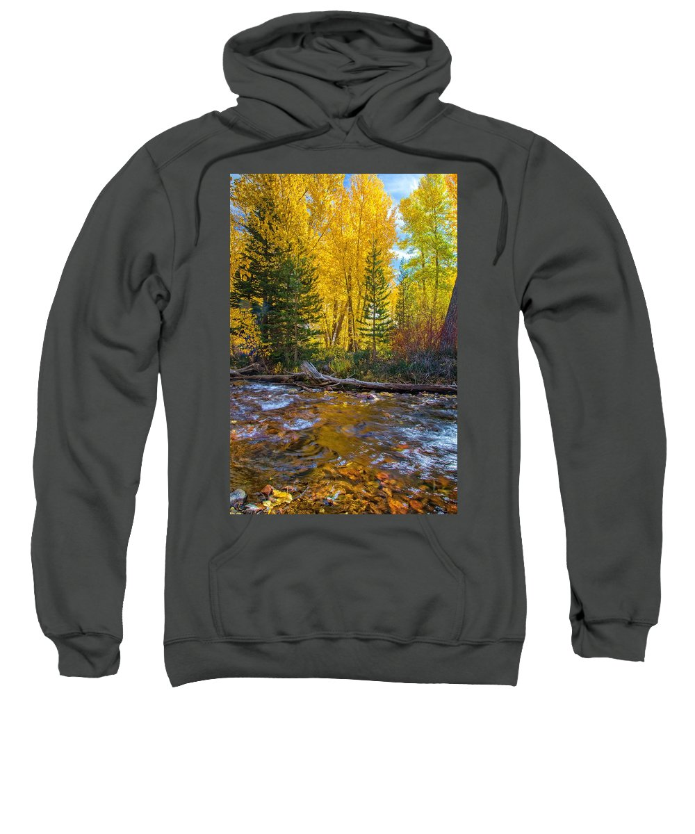 Fall Sweatshirt featuring the photograph Reflections Of Gold by Lynn Bauer