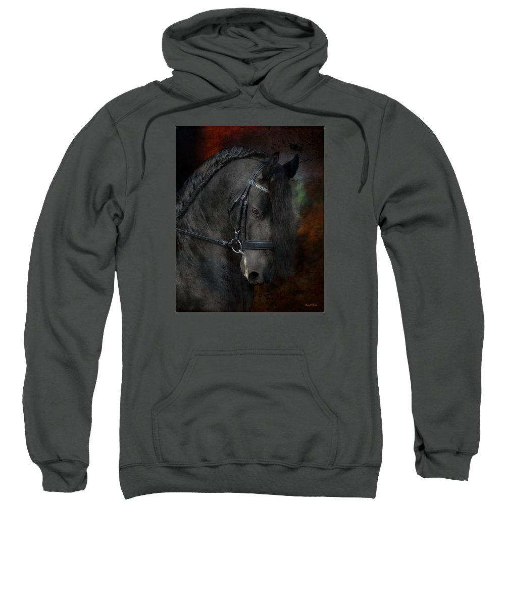 Horses Sweatshirt featuring the photograph Rembrandt by Fran J Scott