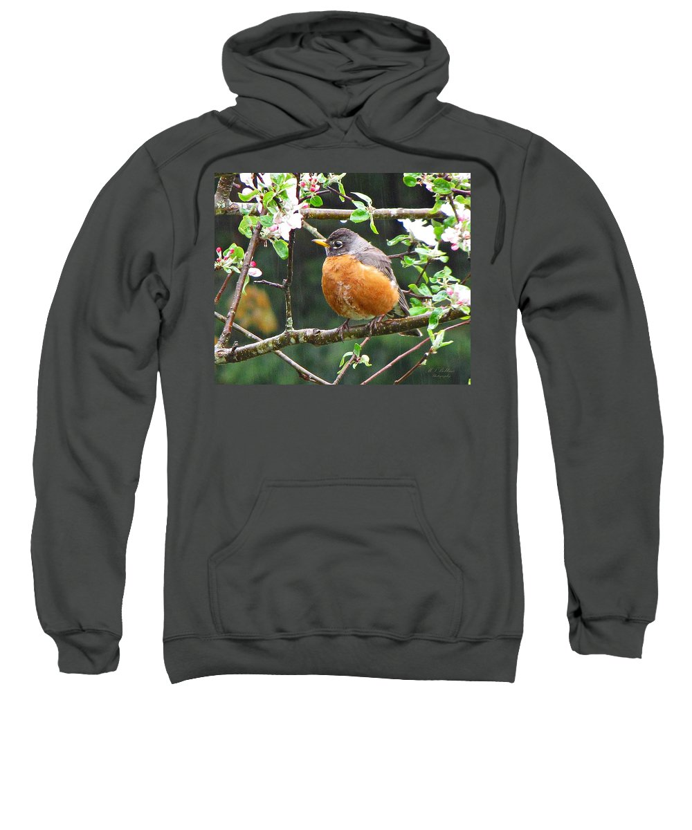 Robin Sweatshirt featuring the photograph Robin In Apple Tree by MTBobbins Photography