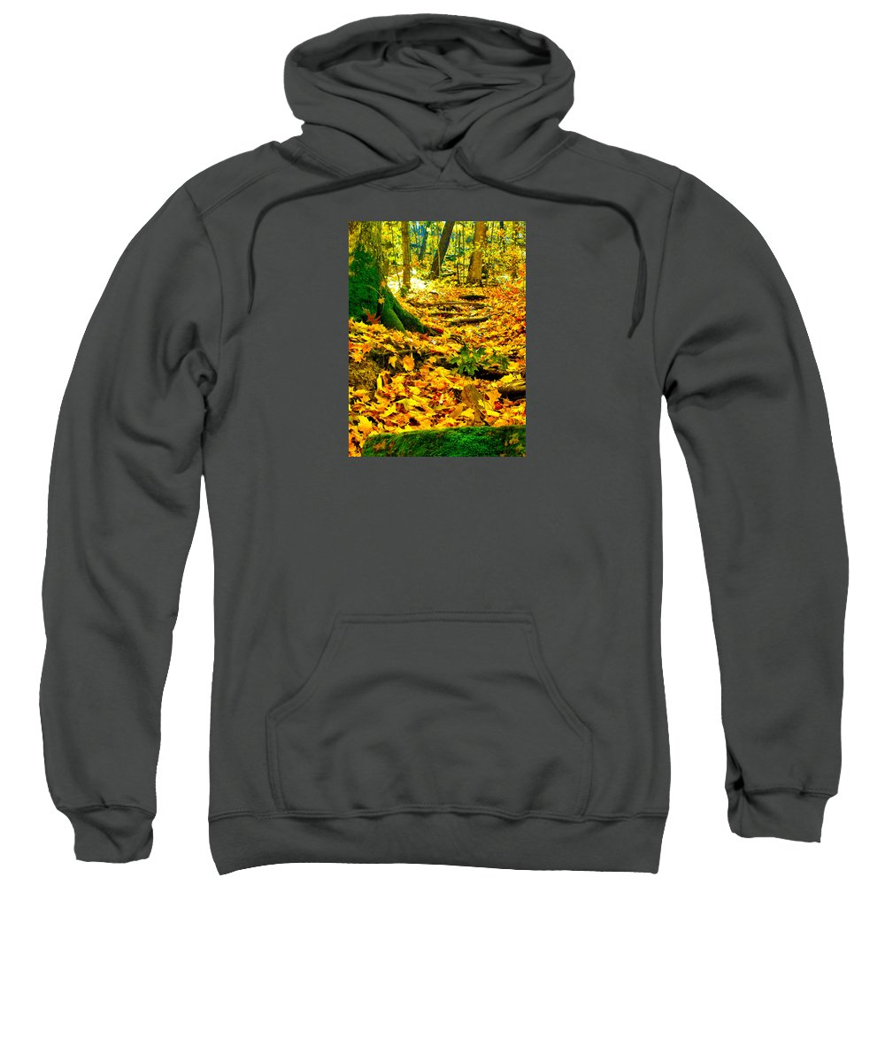 Fall Sweatshirt featuring the photograph Root Steps by Zafer Gurel