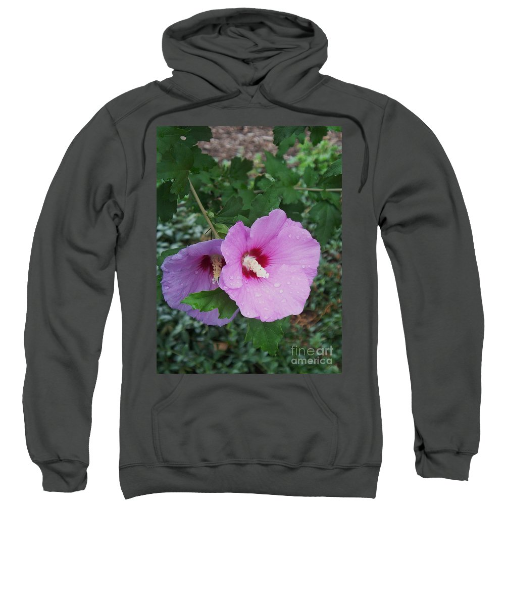 Flower Sweatshirt featuring the photograph Rose Mallow by Eric Schiabor