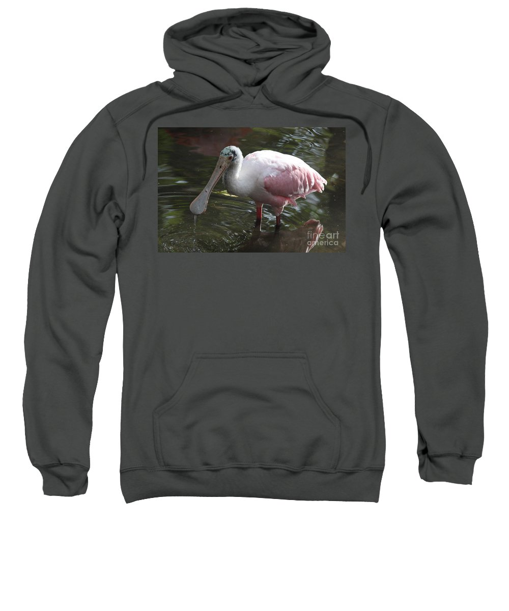 Roseate Spoonbill Sweatshirt featuring the photograph Roseate Spoonbill by Christiane Schulze Art And Photography