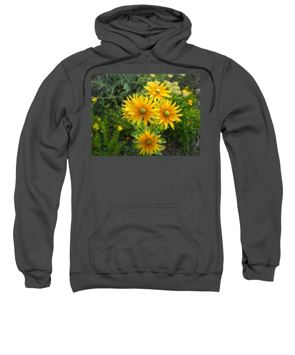 Rudbeckia Sweatshirt featuring the photograph Rudbeckias With Green Centers by Faye Cummings