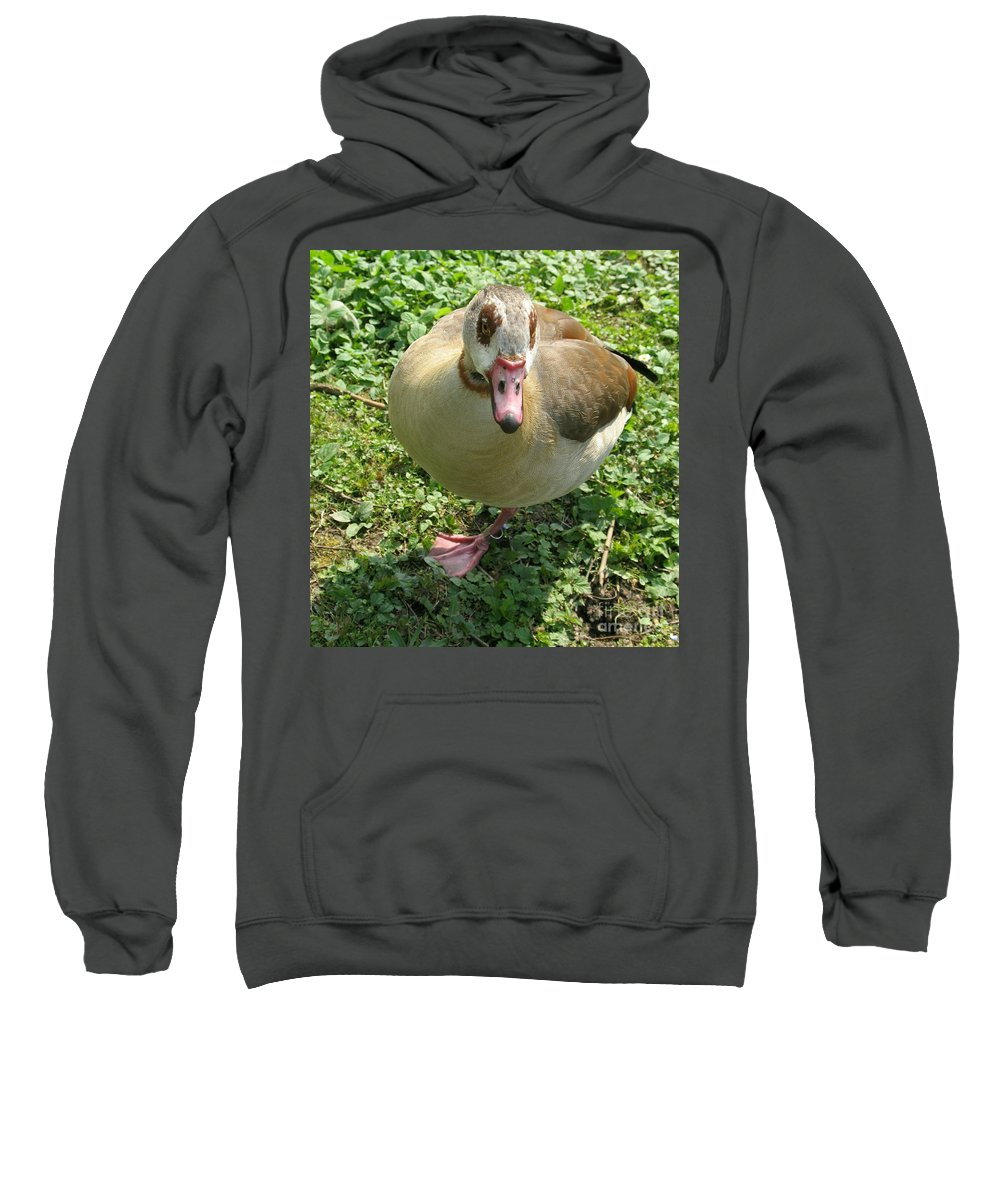 Goose Sweatshirt featuring the photograph Sad Goose by Christiane Schulze Art And Photography