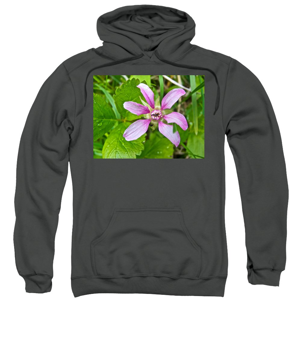 Salmonberry On Trail To Wapta Falls In Yoho Np Sweatshirt featuring the photograph Salmonberry On Trail To Wapta Falls In Yoho Np-bc by Ruth Hager