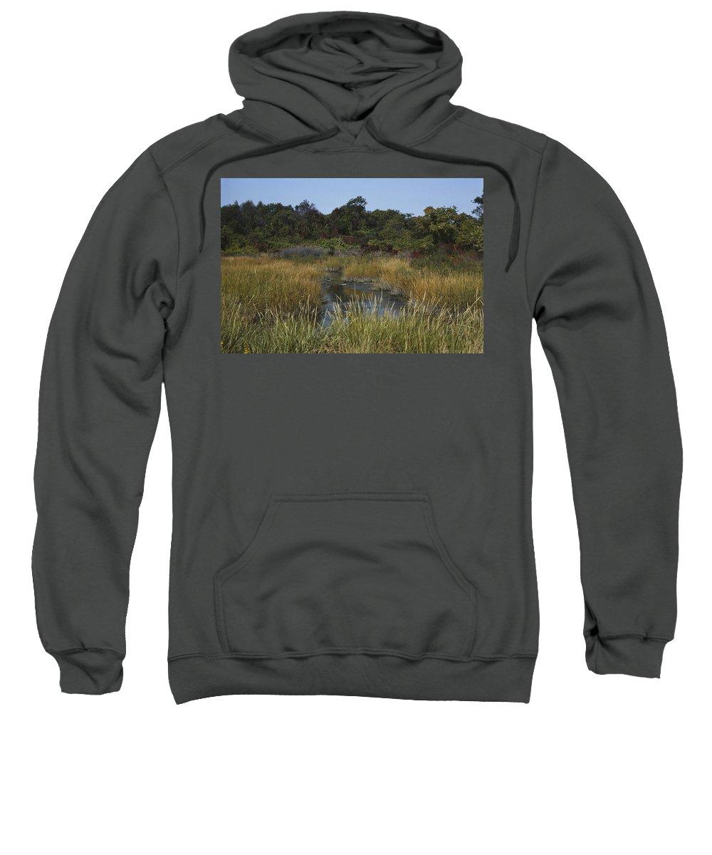 Designs Similar to Salt Marsh In Autumn