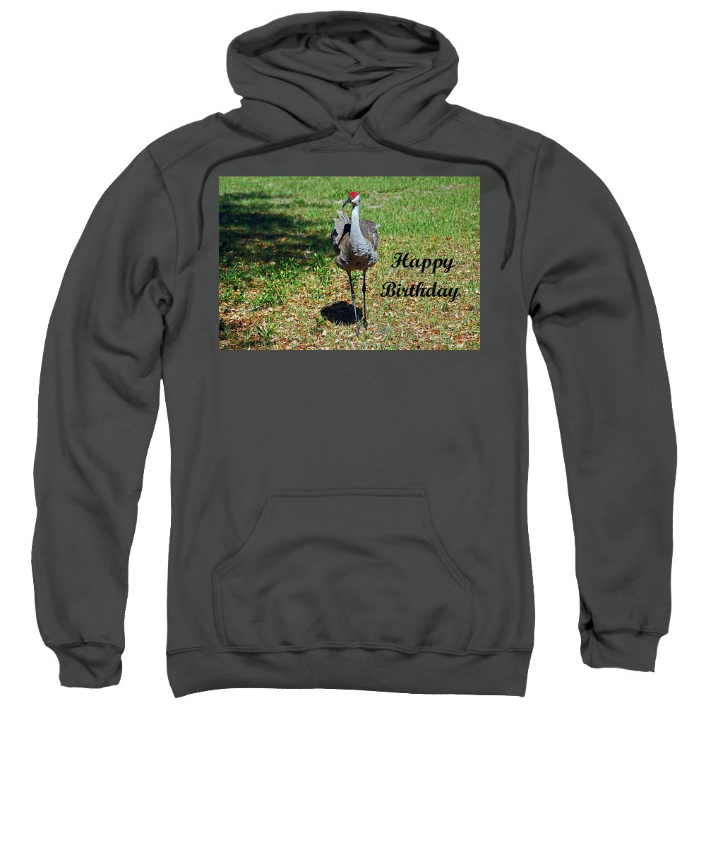 Crane Sweatshirt featuring the photograph Sandhill Crane Birthday by Aimee L Maher ALM GALLERY