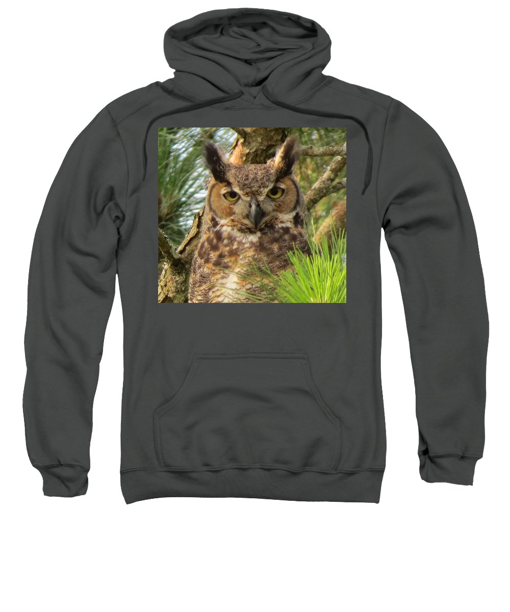 Owl Sweatshirt featuring the photograph Scholarly by Kent Dunning
