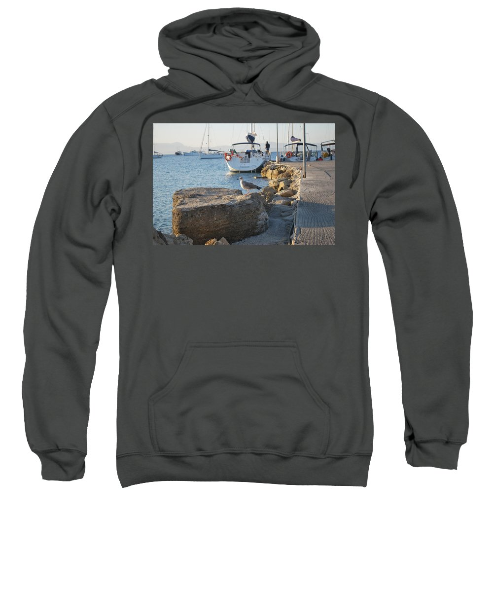 Sea Gull Sweatshirt featuring the photograph Sea Gull 1 by George Katechis