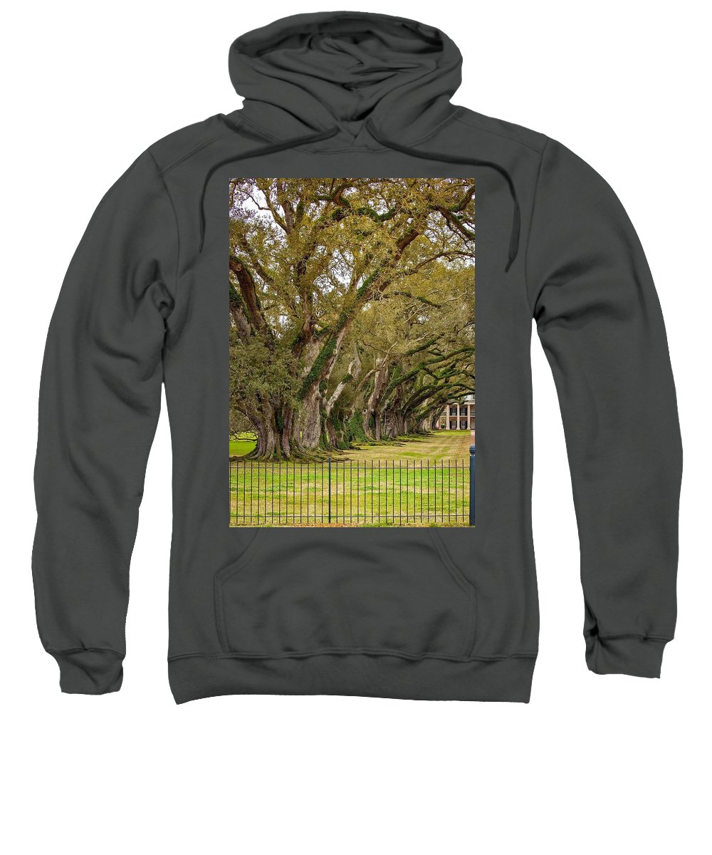 Oak Alley Plantation Sweatshirt featuring the photograph Sentinels by Steve Harrington