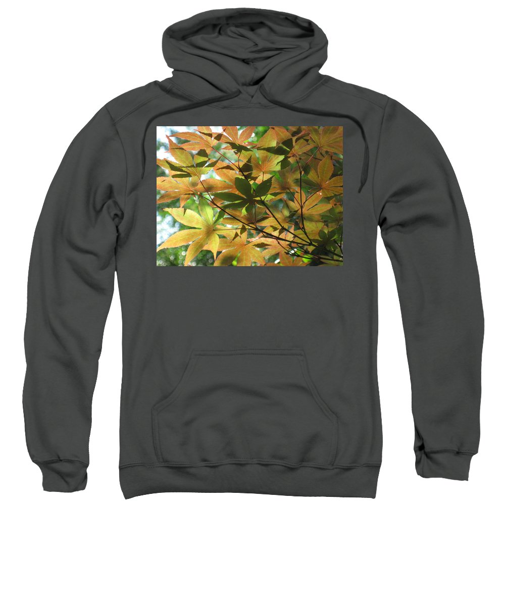 Shading Sweatshirt featuring the photograph Shadows Of Maple by Ron Monsour