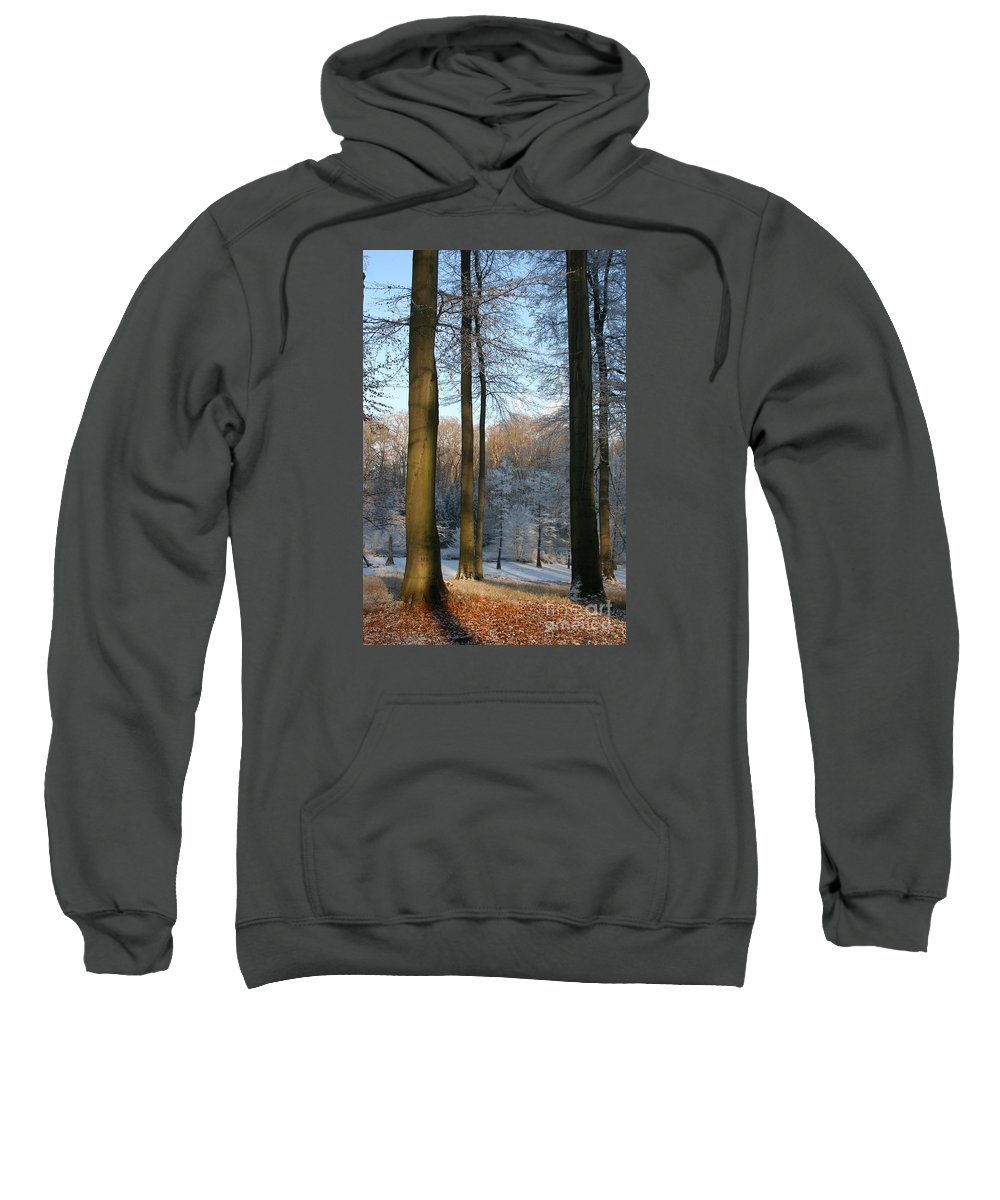 Sunlight Sweatshirt featuring the photograph Light And Shadows In Wintertime by Christiane Schulze Art And Photography