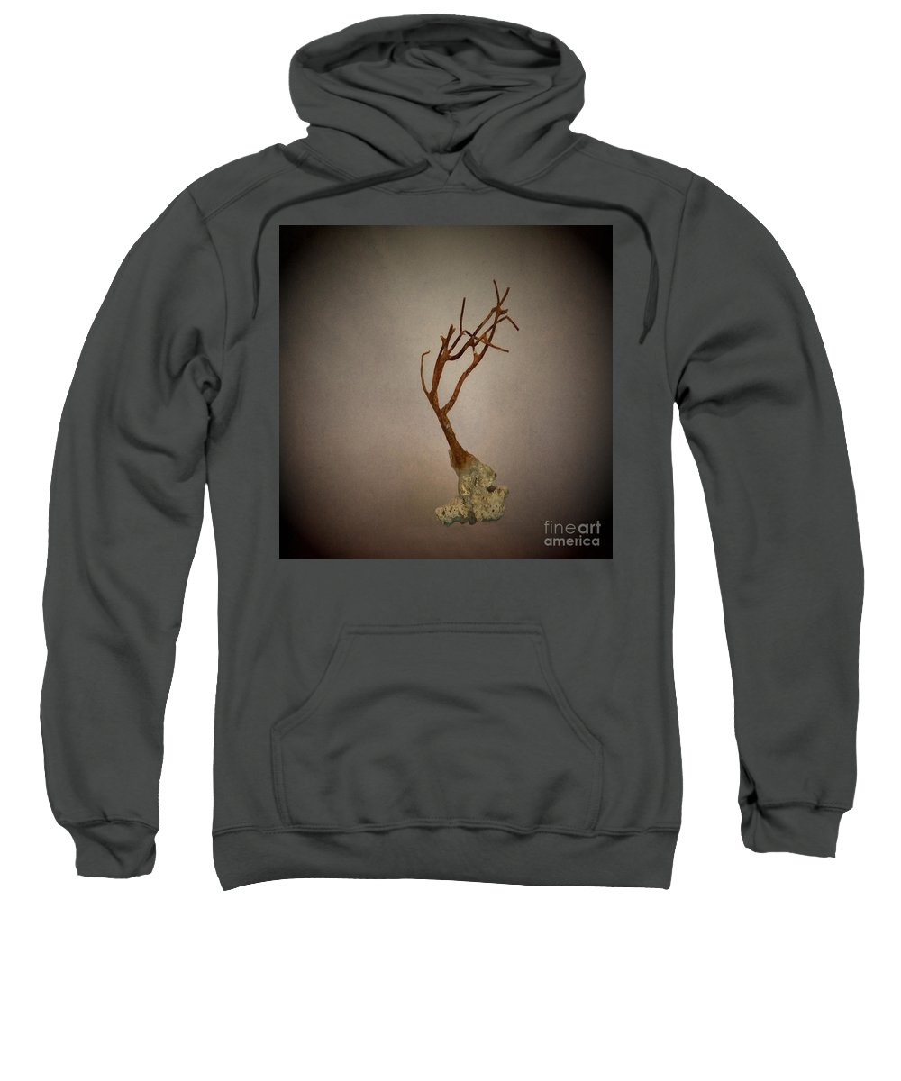 Nature Sweatshirt featuring the photograph Shell Study 3 Sand by Skip Willits